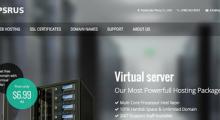 vpsRus:5.25美元/月 KVM 1核 1GB 20GB SSD 1TB 1Gbps 洛杉矶QP/芝加哥