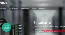 vpsRus:25美元/月 服务器 2x L5640 8GB 4x146GB 10TB@1Gbps 5IP 北卡