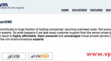 ExpertVM:45美元/年 KVM 1核 512MB 50GB 500GB 100Mbps 新加坡