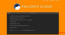 FalconsCloud:1.74美元/月 KVM 1核 512MB 6GB SSD 不限流量@1Gbps 英国OVH