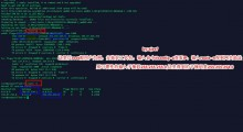 ikoula独立服务器DD纯净系统